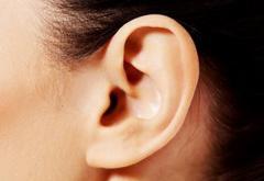 耳で体チェック