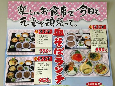 hanamizukiIMG_5249.jpg