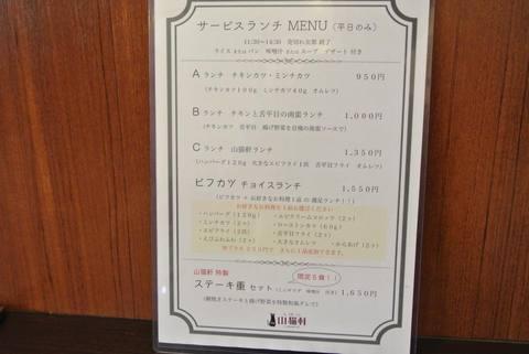 yamanekoIMG_5864.jpg