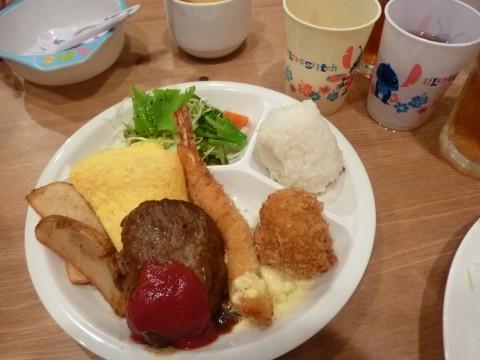 P1000067hanomu_ks.jpg