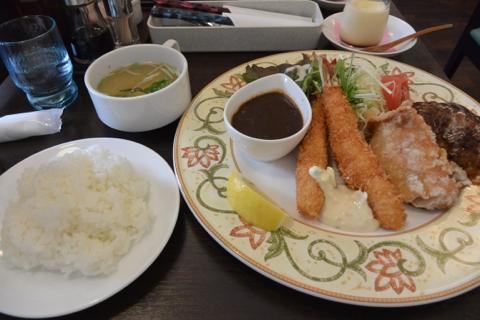 yamanekokenDSC_0630.jpg