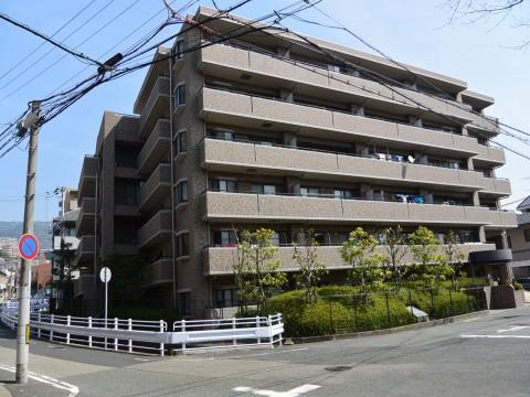 DSC_1178sinoharanakamati_ks.jpg