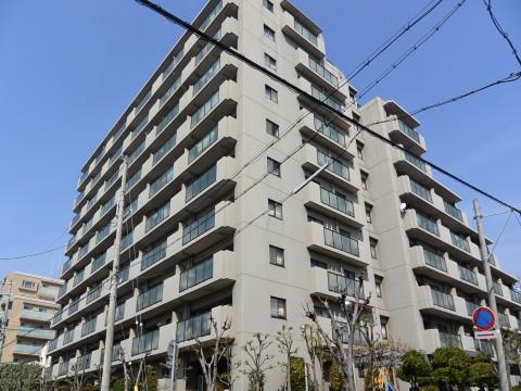 DSC_1153sinoharaminami_ks.jpg