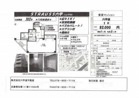 stra206_ks.jpg
