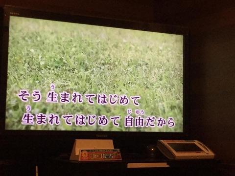 blogIMG_9428.jpg