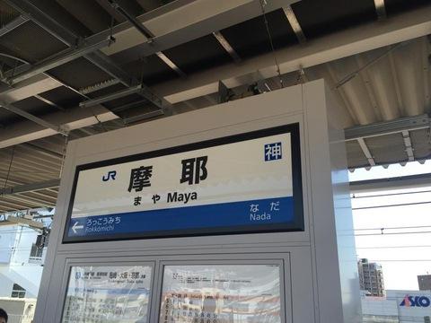 mayaIMG_3994.jpg