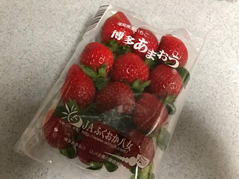 blogIMG_7244.jpg