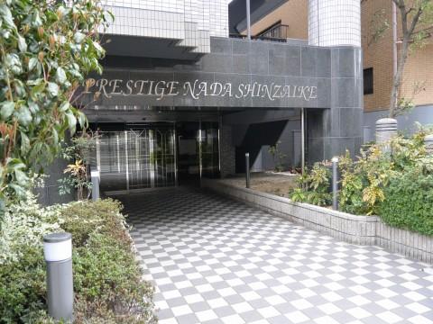 DSC_0771hamada_ks.jpg