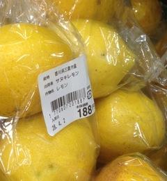 レモン。16・4・5