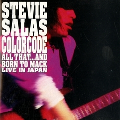 Stevie Salas Live In Japan