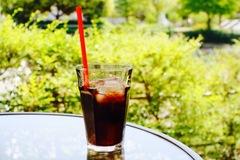 コーヒーポリフェノール①