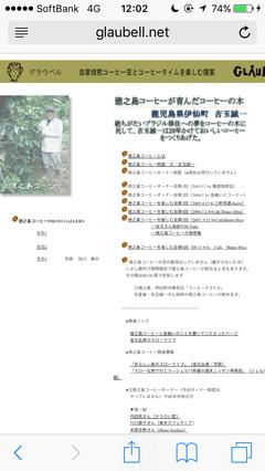 日本のコーヒー農園②