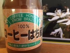 コーヒーの花枯れた