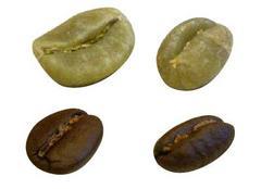 コーヒー豆の名前④