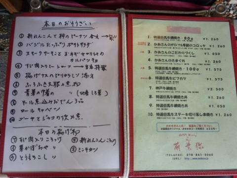 P1000984mohaya_ks.jpg