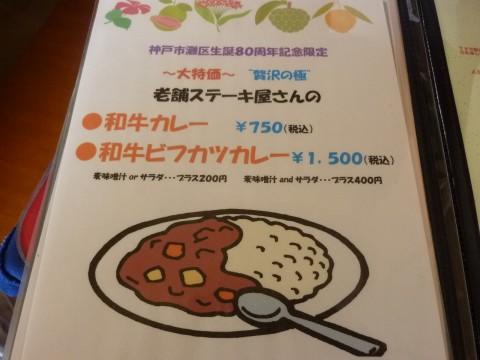 P1000985mohaya_ks.jpg