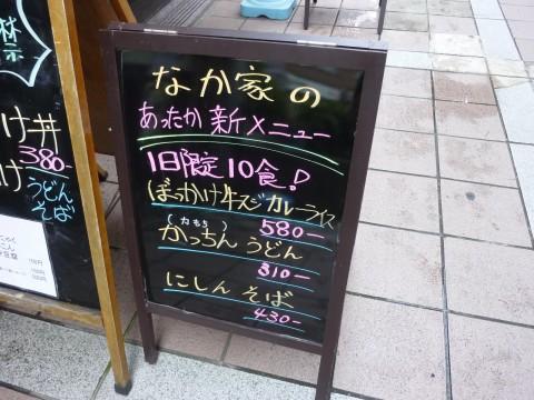 P1020420nakaya_ks.jpg