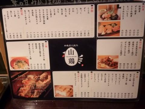 P1020491yamadori_ks.jpg
