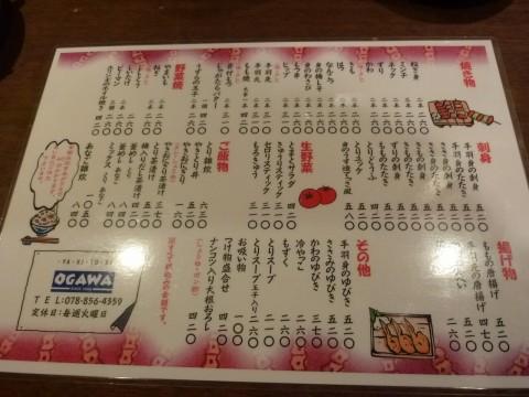 P1030793ogawa_ks.jpg