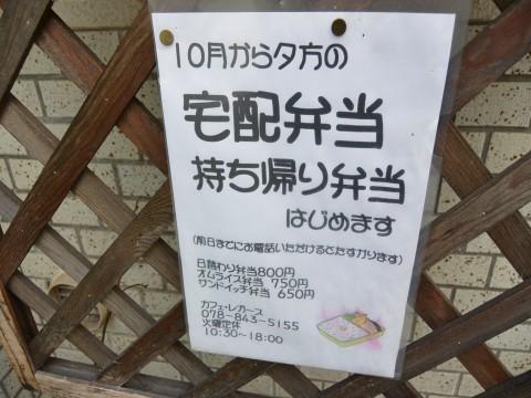 DSC_0200legasu_ks.jpg