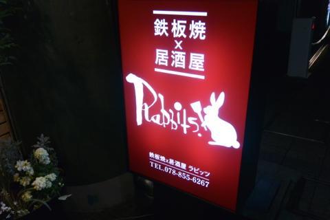 rabitDSC_0601.jpg