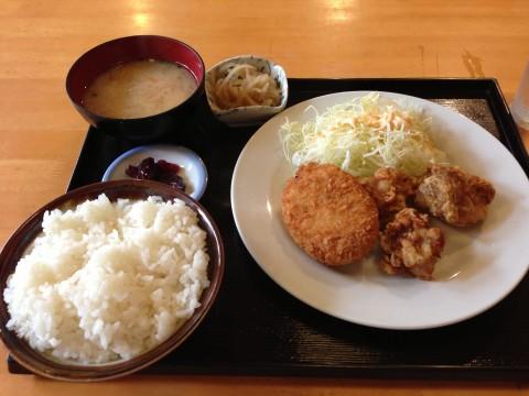 IMG_0472ajisai_ks.jpg