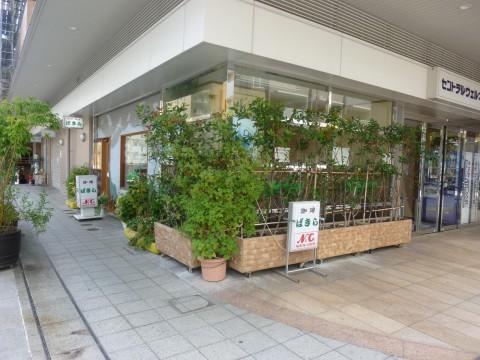 喫茶ぱきら「セントラル入り口横の喫茶店!」