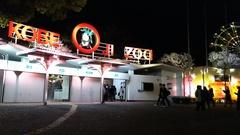 王子動物園 夜桜☆