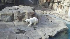 王子動物園☆